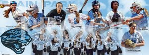 Banner - 2016 Spain Park Softball Banners
