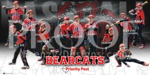 Print - Bearcats Baseball Team