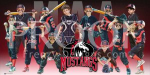 Print - MAA Mustangs Baseball Team