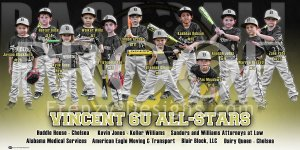 Print - Vincent 6U All-Stars Baseball Team
