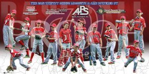 Print - 2015 Whitby Chiefs Baseball Team