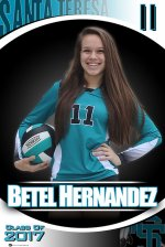 Banner - 2015 Santa Teresa Senior Volleyball Players