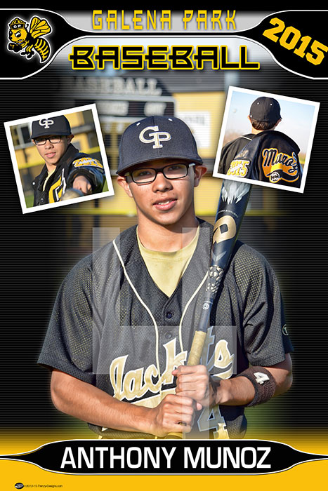 Custom Senior Baseball Banners 2016 Galena Park High School
