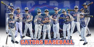 Banner - 2016 Gators Baseball Team