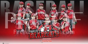 Print - 2016 Bearcats Baseball Team