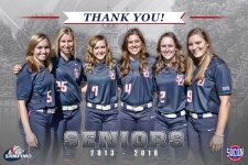 Banner - Custom Senior Softball Banner - Samford University