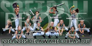 Banner - Delaware Cobras 12U Black Softball Team