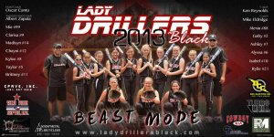 Banner - 2016 14U Lake in the Hills Hurricanes Softball Team