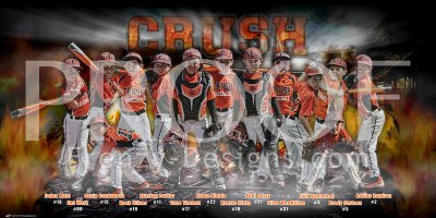 Print - 2016 Orange Crush Baseball Team