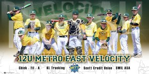 Print - 2016 Metro East Velocity Baseball Team
