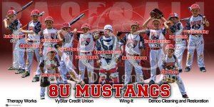 Print - Mustangs Baseball Team