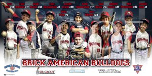 Print - Brick American Bulldogs Baseball Team