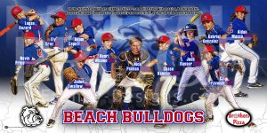 Print - Beach Bulldogs Baseball Team