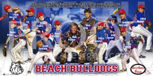 Banner -  Beach Bulldogs Baseball Team & Posters