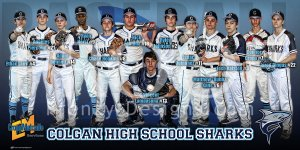 Print - Colgan High School Baseball Teams