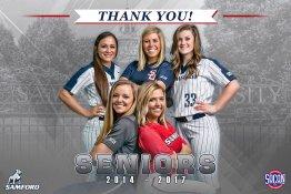 Banner - 2017 Custom Senior Softball Banner - Samford University