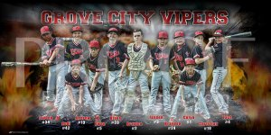 Print - Grove City Vipers Baseball Team