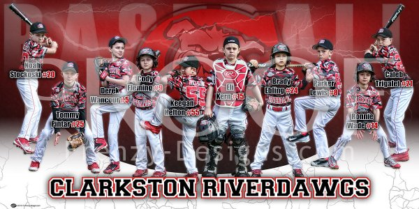 Banner - 2018 Clarkston Riverdawgs 14U Baseball Team