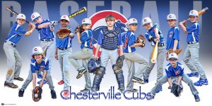 Banner - 2017 Mustangs 8U Baseball Team
