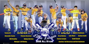 Banner - 2017 Mason District 11-12 All Stars Baseball Team