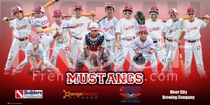 Print - 2017 Mustangs 8U Baseball Team
