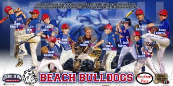 Banner -  2017 Beach Bulldogs Fall Baseball Team