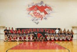 Banner -  2018 Forreston Seniors