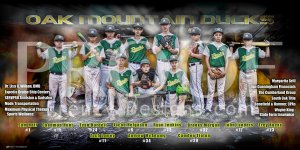 Print - Oak Mountain Ducks Baseball Team