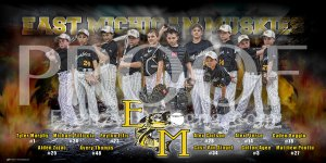 Banner - 2018 East Michigan Muskies Baseball Team