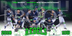 Print - Michigan Rebels Baseball Team