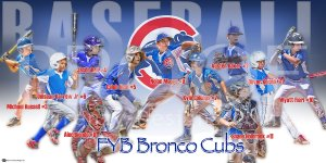 Print - FYB Bronco Cubs Baseball Team