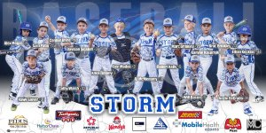 Print -  All-Star Baseball Teams
