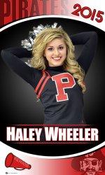 Banner - Dawson Springs High School Cheerleaders
