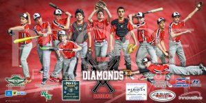 Print -  2019 Black Diamonds Baseball
