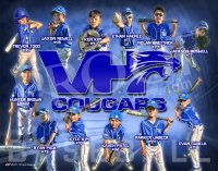 Posters - Vernon Hills 11U Cougars Fall Baseball Collage