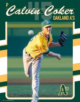 Banner - Golden Valley Softball Senior