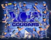 Posters - Vernon Hills 2020 Cougars Fall Baseball Collage