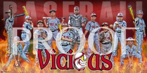 Print -Vicious Baseball Team