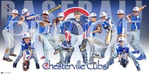 Print - 2014 Chesterville Cubs U10 Baseball Team