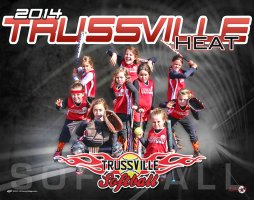Digital - Custom Softball Poster - Trussville Heat