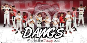 Banner - Milan Red Dawgs Baseball Team - Final