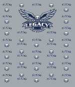 Banner - Legacy High School Eagles - Logo Backdrop With Stand
