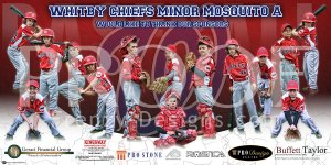 Banner - 2015 Whitby Chiefs Baseball Team
