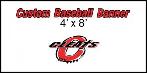 Banner - 2015 Cleats 02 Softball Team