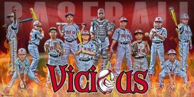 Banner - Henderson Fire Baseball Team