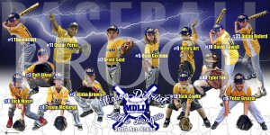 Posters - 2015 Mason District All Star Baseball Teams