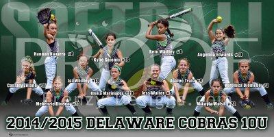 Banner - Delaware Cobras 12U Black Softball Team
