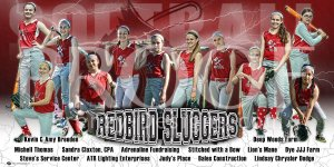 Print - Redbird Sluggers Softball Team