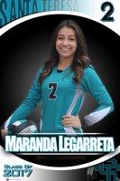 Banner - 2016 Santa Teresa Senior Volleyball Players