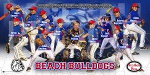 Print - Beach Bulldogs Baseball Team